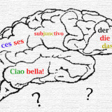 language_brain