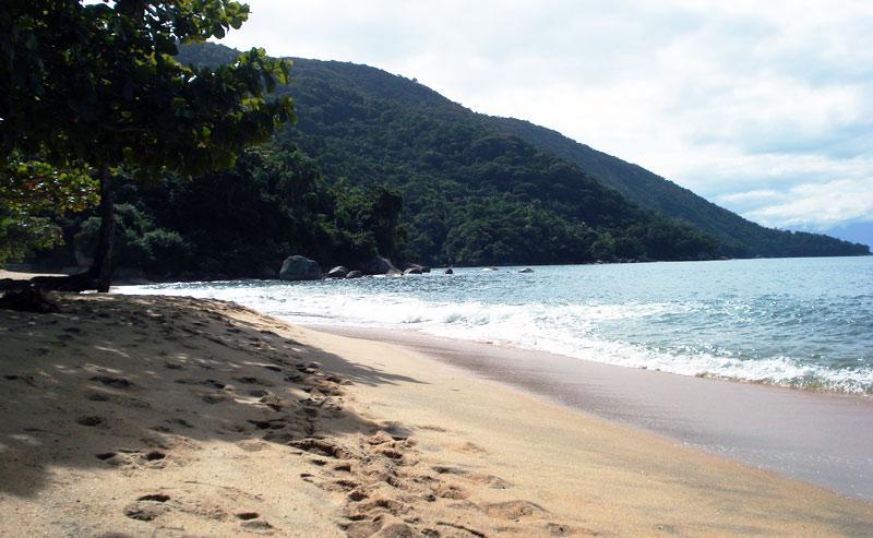 Top surf destinations: Brazil