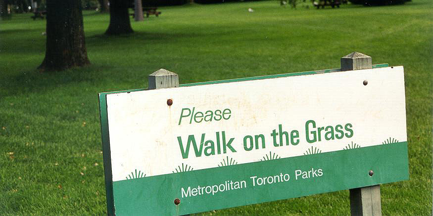 walk-on-the-grass-toronto