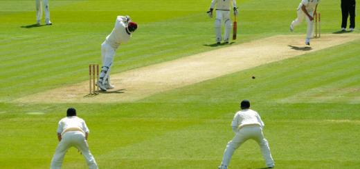 cricket-wicket