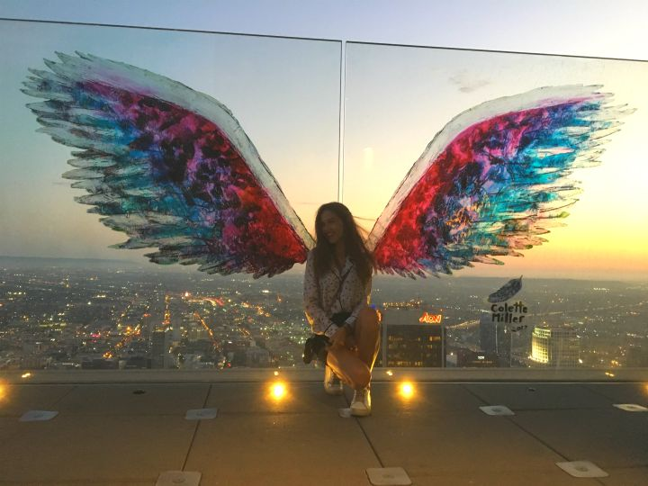 skyspace LA wings view